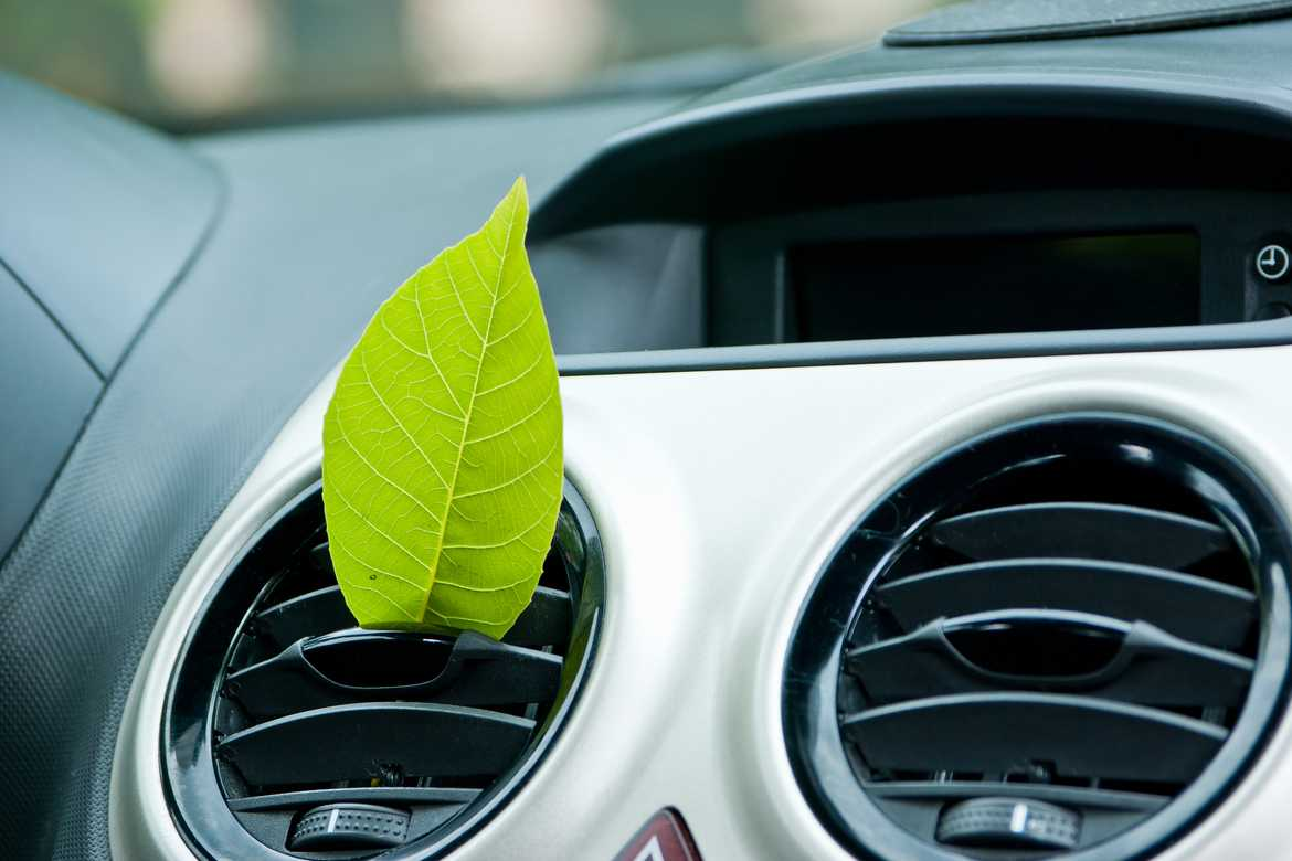 Picture of car air ventilation system with leaf placed on the left hand side one
