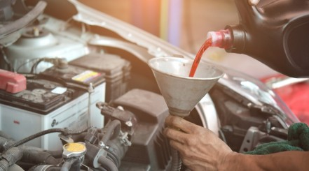 Pouring Transmission Fluid in Vehicle