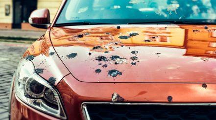 Car with Bird Poop on Hood
